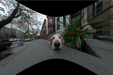 Uncropped fisheye lens correction